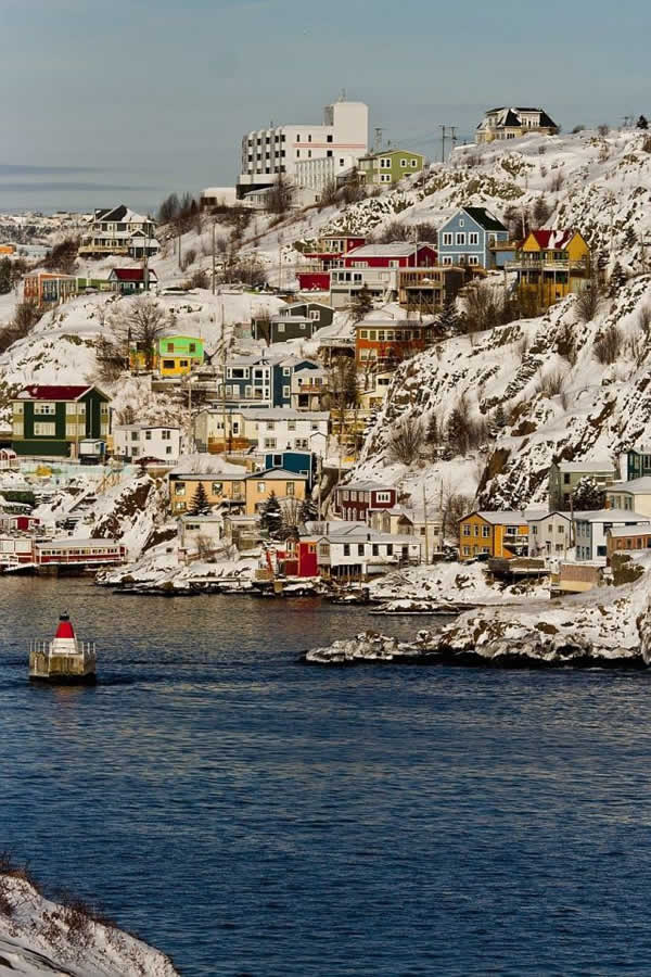 St Johns, Terranova