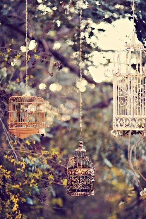 gabbie lampadari da giardino shabby chic