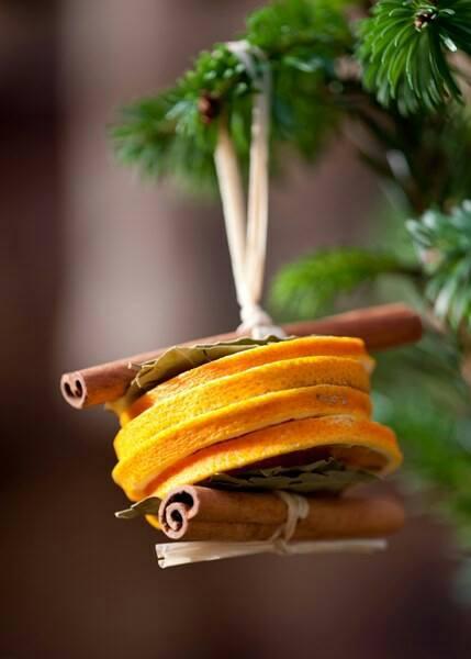 cannella-arancia-albero