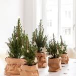 alberi-natale-sacchetti