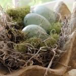 centrotavola-pasqua-uova