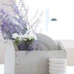 lavanda-piatti