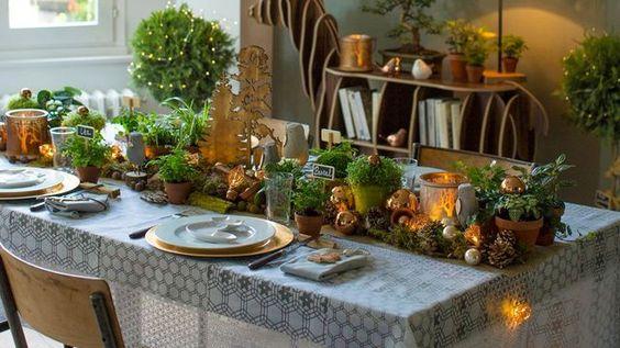 tavola-piante