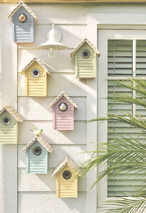 casette uccelli esterno casa