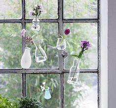 giardino verticale fiori