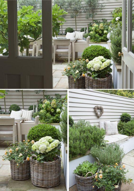 idee piante esterno