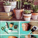 cactus vasi