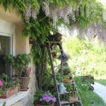 scala fiori