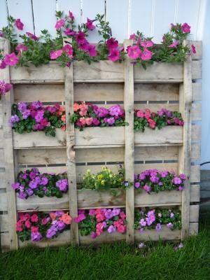 pallet fiori rosa viola