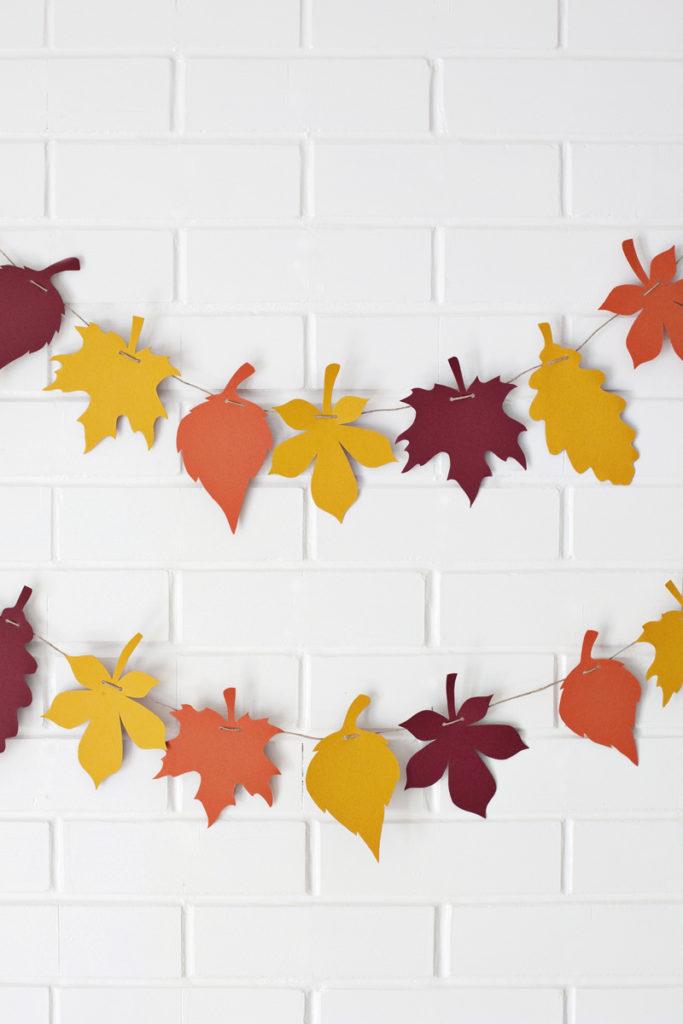fili foglie