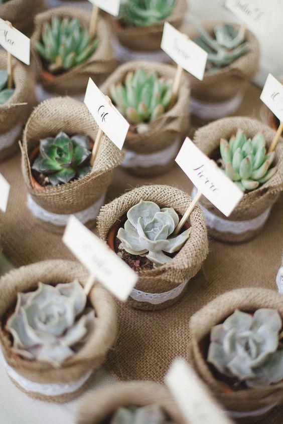 cactus segnaposti shabby chic